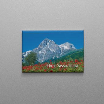 Calamita del Gran Sasso d'Italia con papaveri rossi